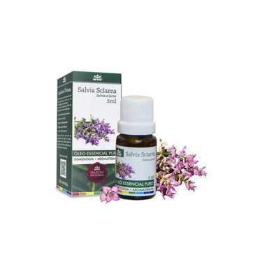 13209802675-salvia-sclarea-aroma-help-wnf